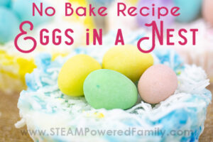 no bake eggs in a nest