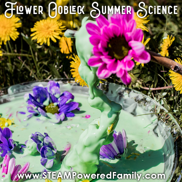 Watching properties of non-Newtonian Fluid Oobleck in flower recipe