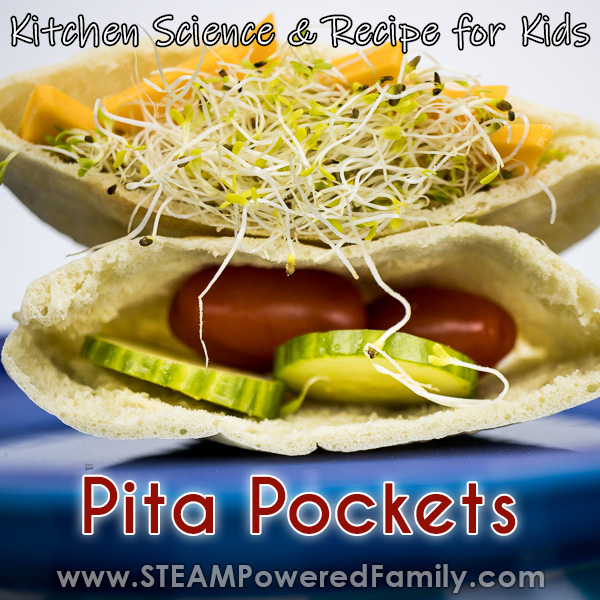 On a blue plate against a white background sits a pita pocket cut in half. The top one is stuffed with sprouts and cheddar, the bottom is stuffed with cucumbers and tomatoes. Overlay text says Pita Pockets Kitchen Science and Recipe for Kids