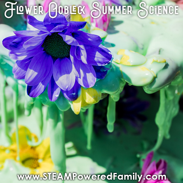 Flower Oobleck is a gorgeous, colourful summer science experiment