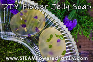 Homemade soap jelly bars with purple flowers sits on a bed of moss and spruce boughs. Overlay says Flower Jelly Soap