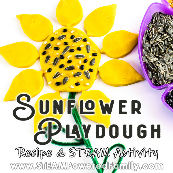 A bright yellow playdough flower is decorated with seeds and craft items. Overlay text says Sunflower Playdough Recipe and STEAM Activity