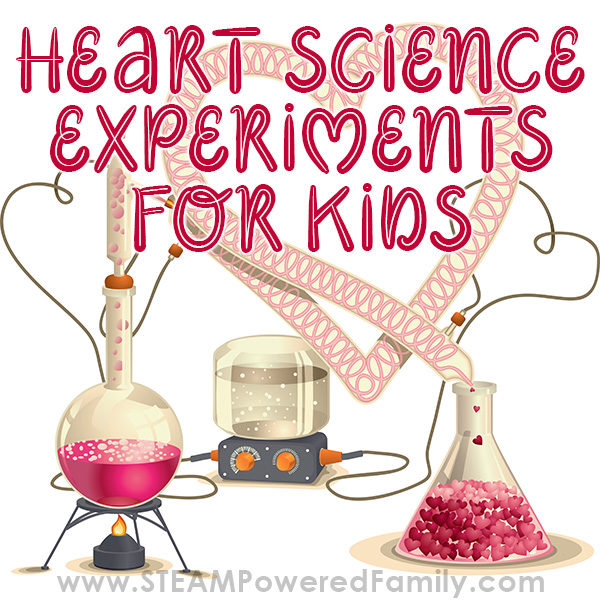 Heart Science Experiments To Inspire A Love Of Learning