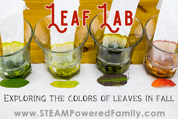 Leaf Lab fall science experiment