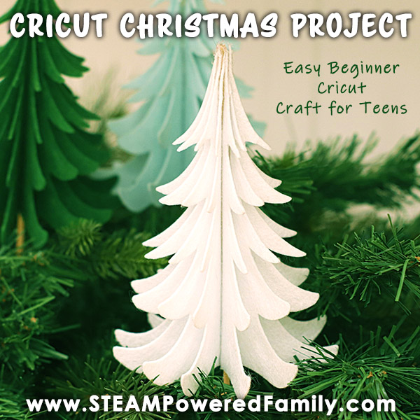 Christmas Tree Cricut Craft for Teens