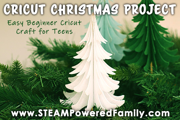 Cricut Christmas Project perfect for teens