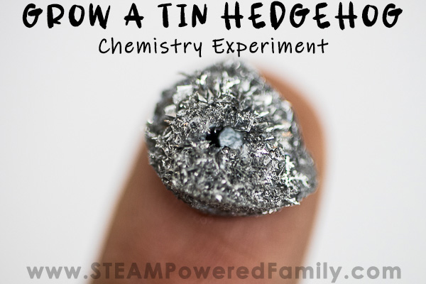 Grow a Tin Hedgehog Experiment