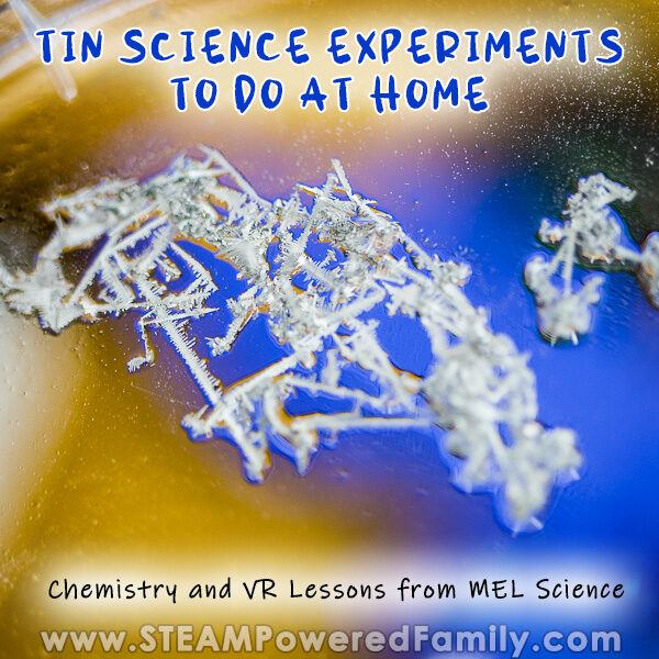 MEL Science Subscription Box Review