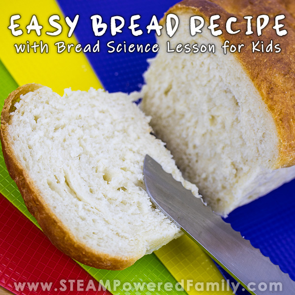 Soft and delicious bread recipe with science lesson for kids