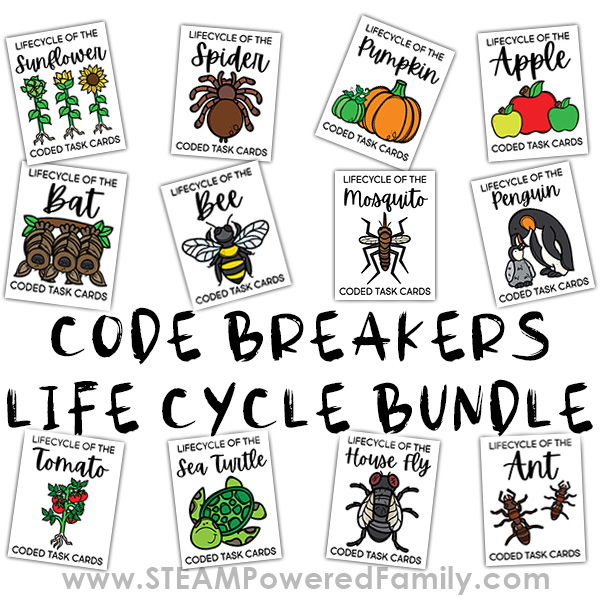 Code Breakers Life Cycle Worksheets