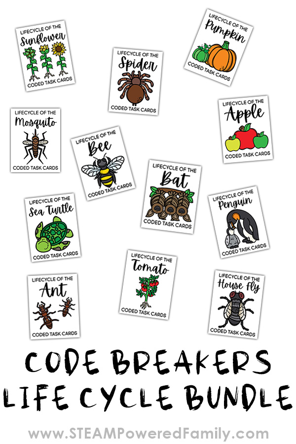 Code Breakers Life Cycle Printables