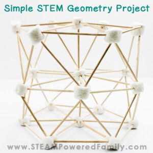 Geometry STEM Building Project