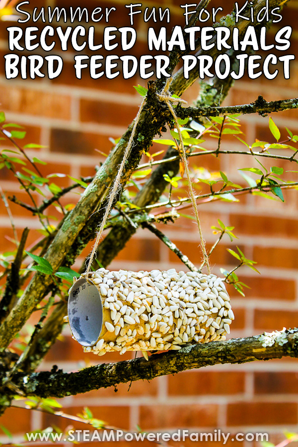 Recycled Materials Peanut Butter Bird Feeder Project