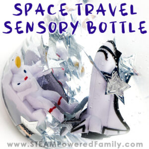 Space Sensory Bottle