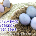 Naturally Dyed Easter Eggs with Blueberries