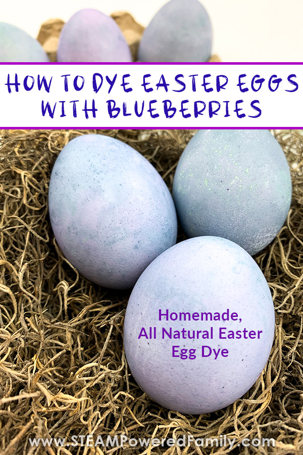 Blueberry Homemade Easter Egg Dye