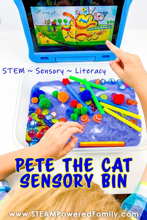 STEM Literacy Sensory Bin Activity
