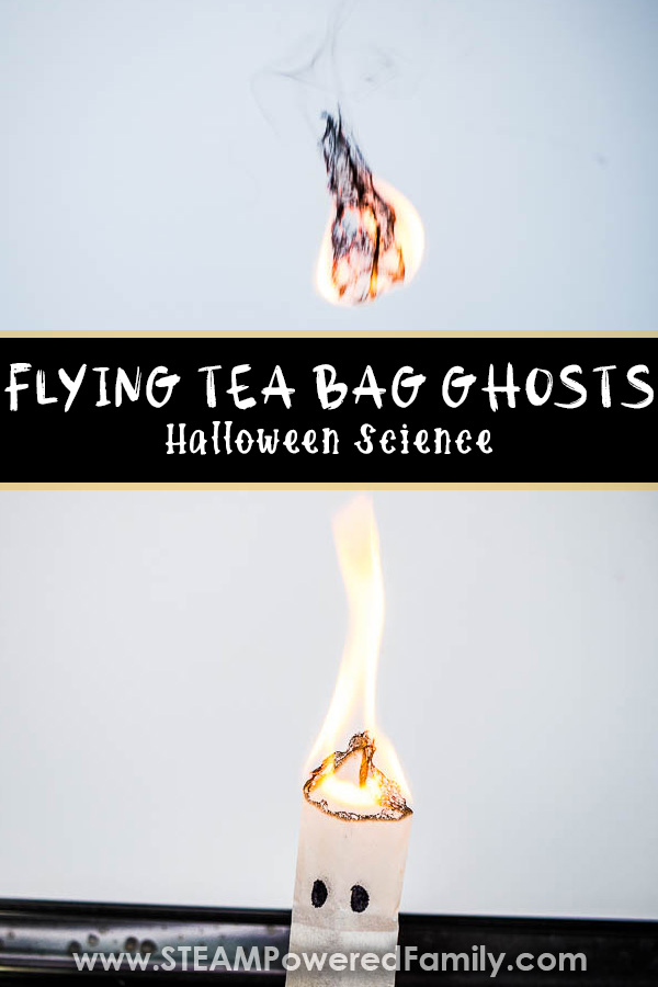 Flying Tea Bag Ghosts Experiment