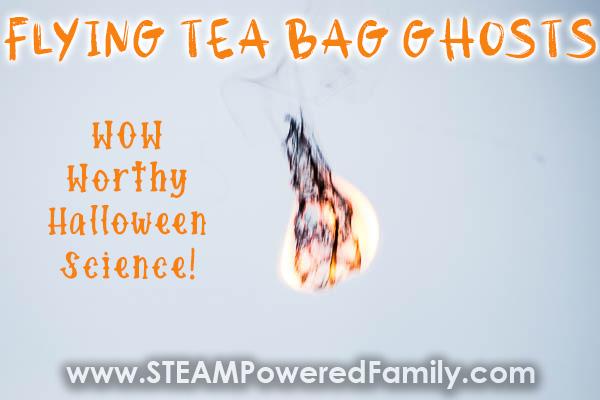 Flying Tea Bag Science Experiment
